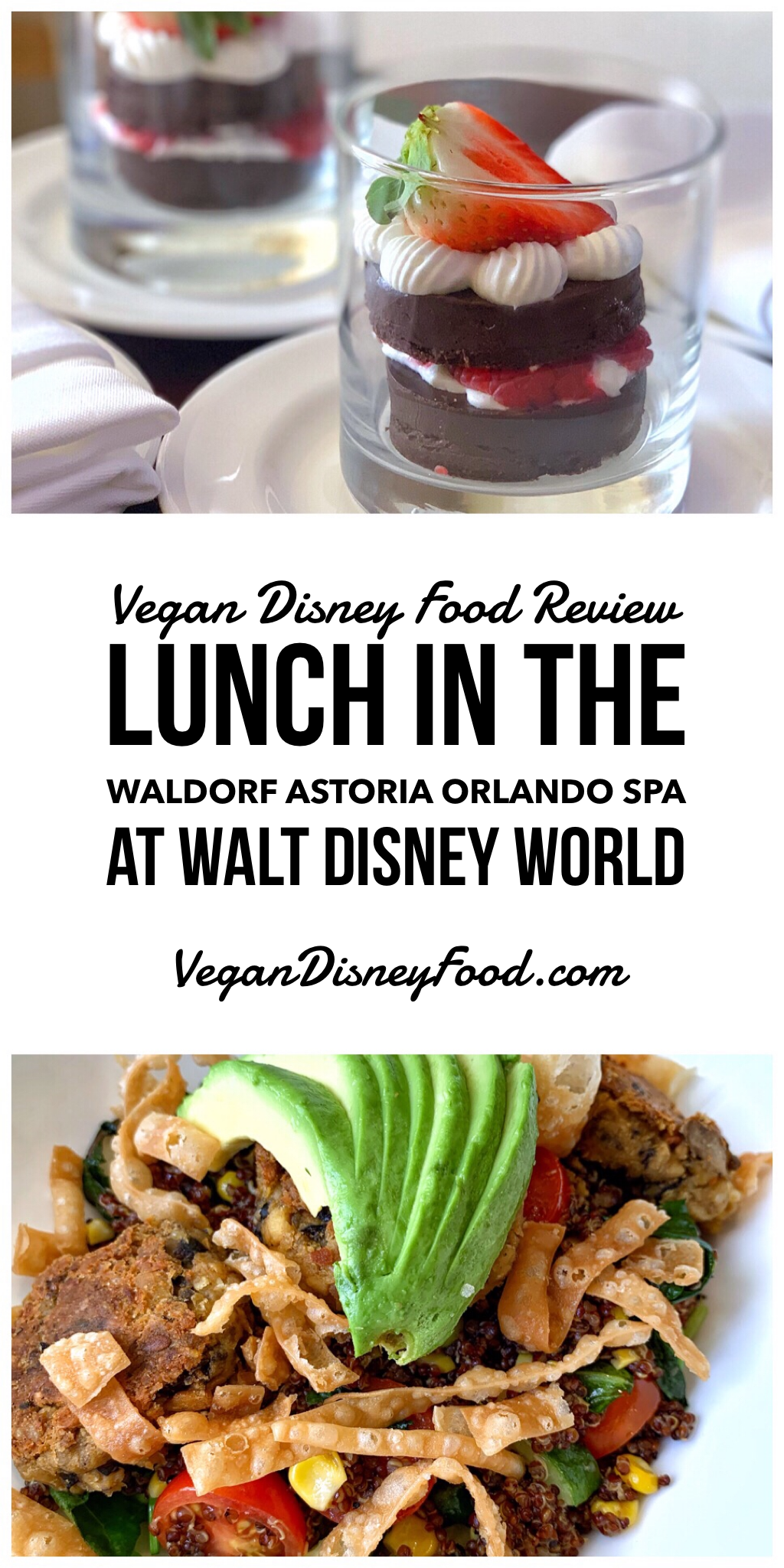 Vegan Disney Food Review: Lunch in the Waldorf Astoria Orlando Spa at Walt Disney World