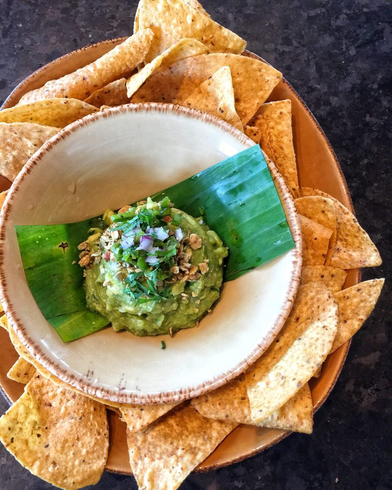 The Complete Guide to Guacamole and Where to Find it at Walt Disney World