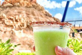 Vegan at Walt Disney World - Lime Dole Whip Margarita at the Polynesian Village Resort