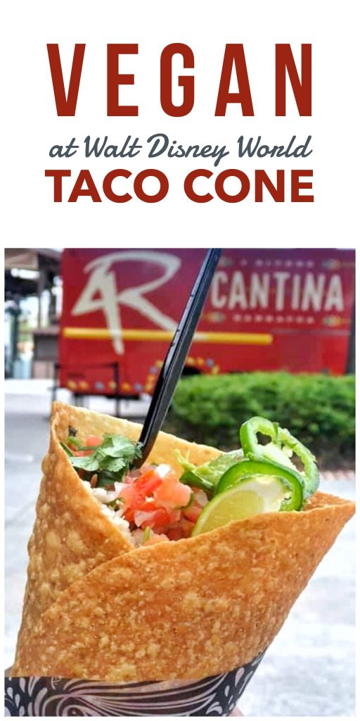 Vegan at Walt Disney World - Taco Cone at 4 Rivers Cantina Food Truck in Disney Springs