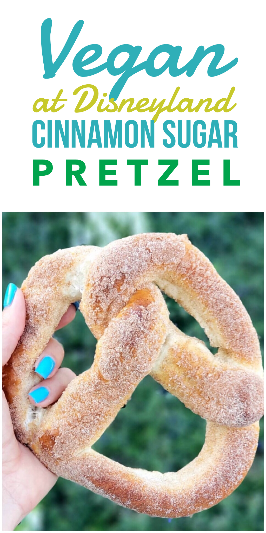 Vegan Snack Option at Disneyland - Cinnamon Sugar Pretzel