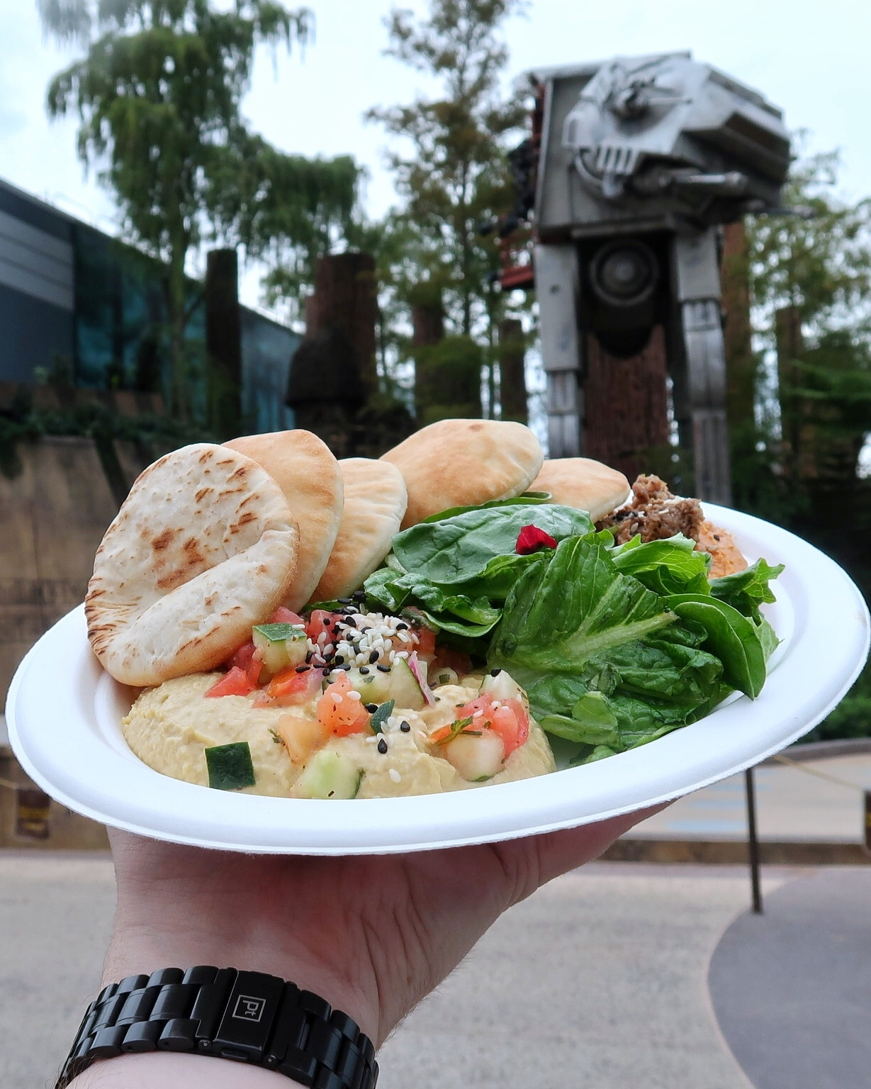 Vegan Two Suns Hummus at Backlot Express in Disney's Hollywood Studios