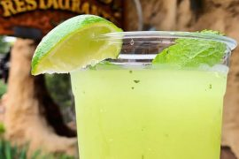 Vegan in Disneyland - Honeydew Agua Fresca at Rancho del Zocalo