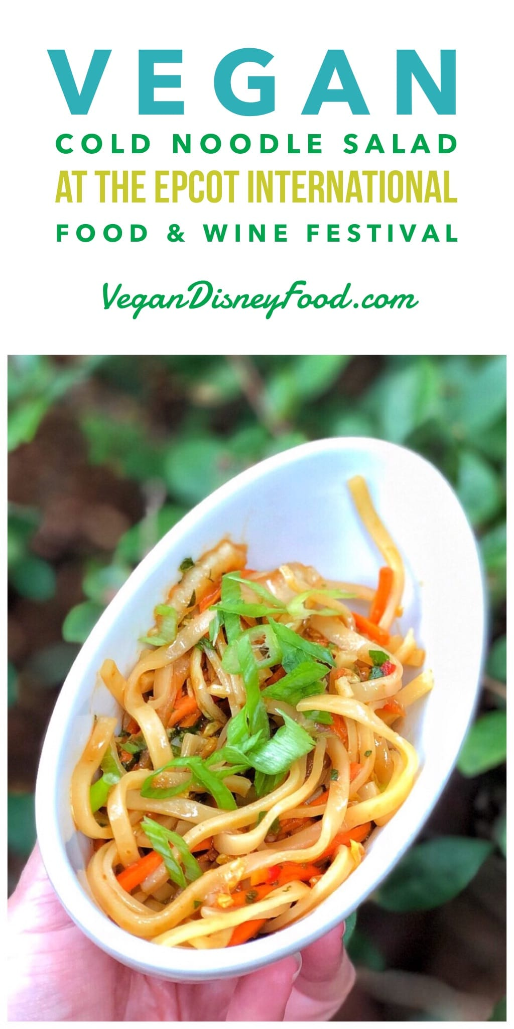 Vegan Cold Noodle Salad at the 2019 Epcot Food and Wine Festival at Walt Disney World