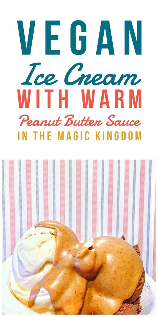 Vegan Ice Cream with Warm Peanut Butter Sauce in the Magic Kingdom at Walt Disney World