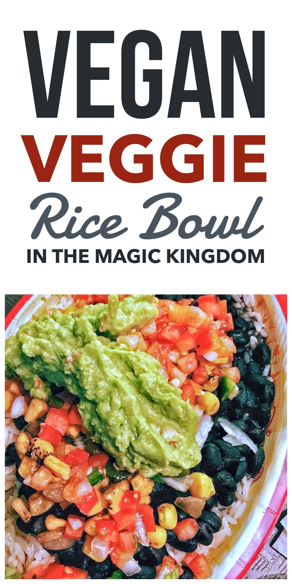 Vegan Veggie Rice Bowl at Pecos Bill Tall Tale Inn and Cafe in the Magic Kingdom