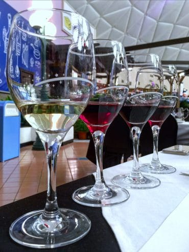 Vegan Wine Pairing Announced for the 2019 Epcot Food and Wine Festival at Walt Disney World