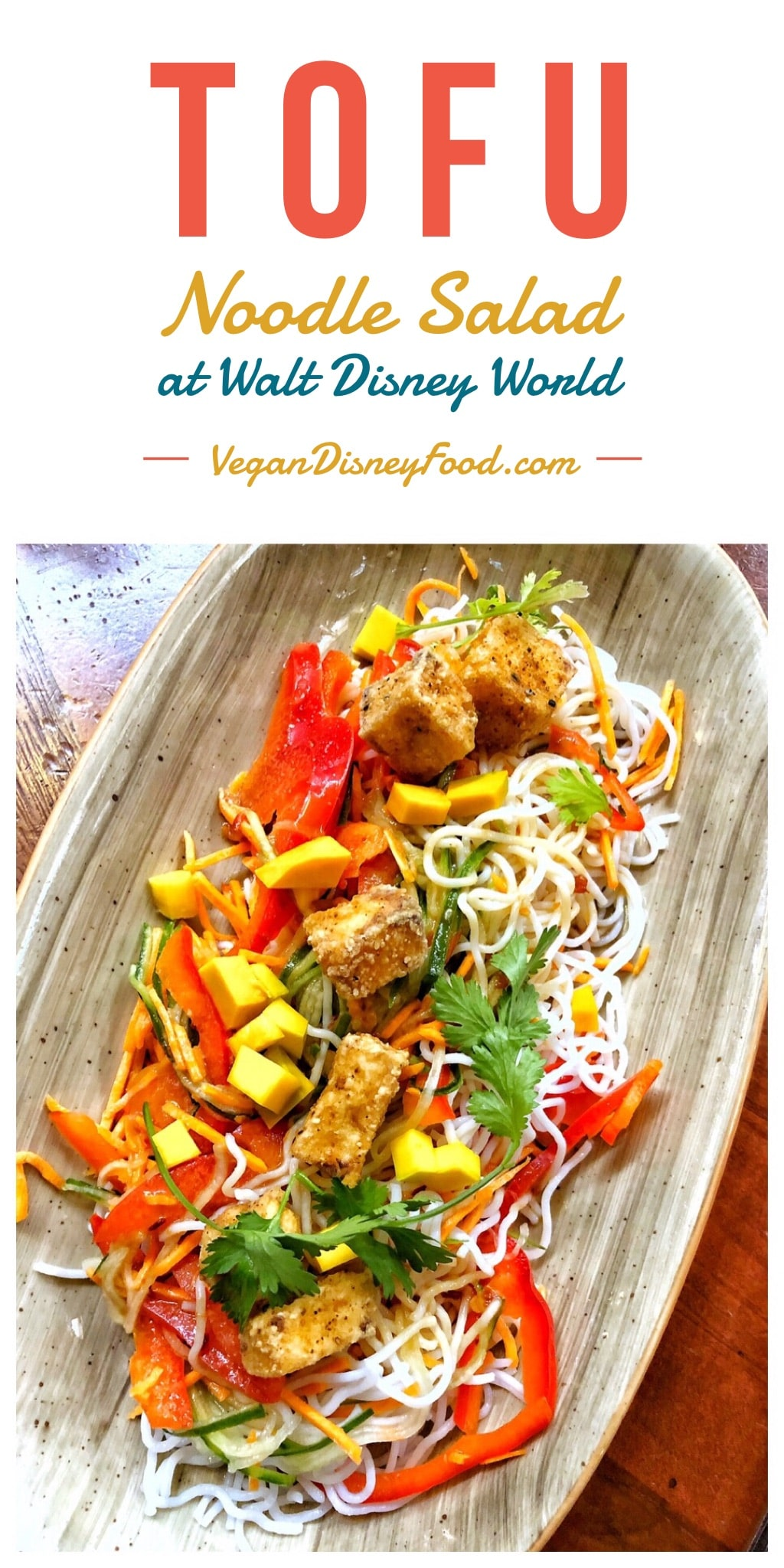 Vegan Tofu Noodle Salad at Kona Cafe in Disney's Polynesian Village Resort at Walt Disney World