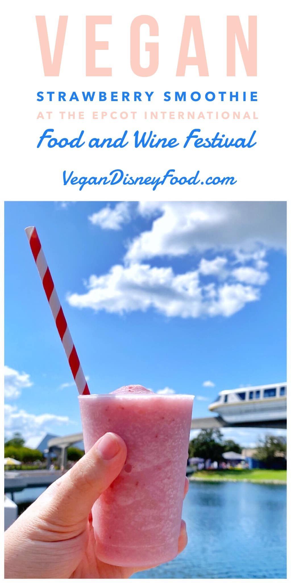 Vegan Strawberry Smoothie at the Epcot International Food and Wine Festival Donut Box at Walt Disney World