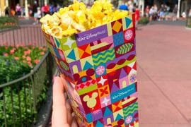 Walt Disney World Gets New Mary Blair Inspired Vegan Popcorn Box