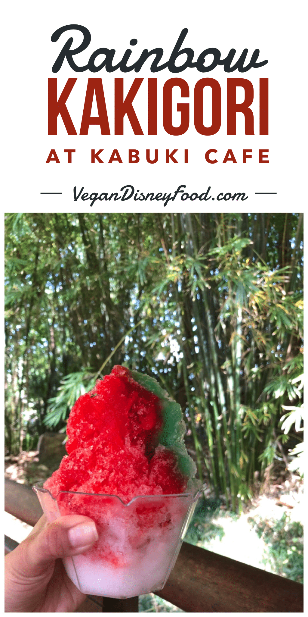Vegan Rainbow Kakigori at Kabuki Cafe in Epcot at Walt Disney World
