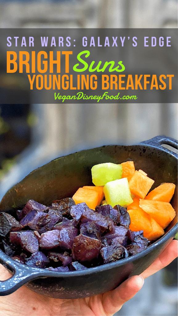 Docking Bay 7 Food & Cargo Vegan Breakfast in Star Wars Galaxy's Edge at Disney's Hollywood Studios