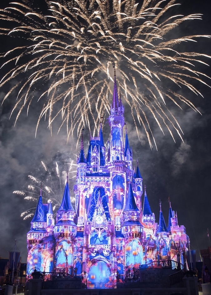 Magic Kingdom Happily Ever After Fireworks Dessert Party Vegan Options