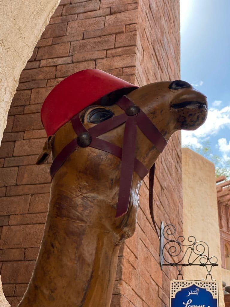 Morocco camel Epcot