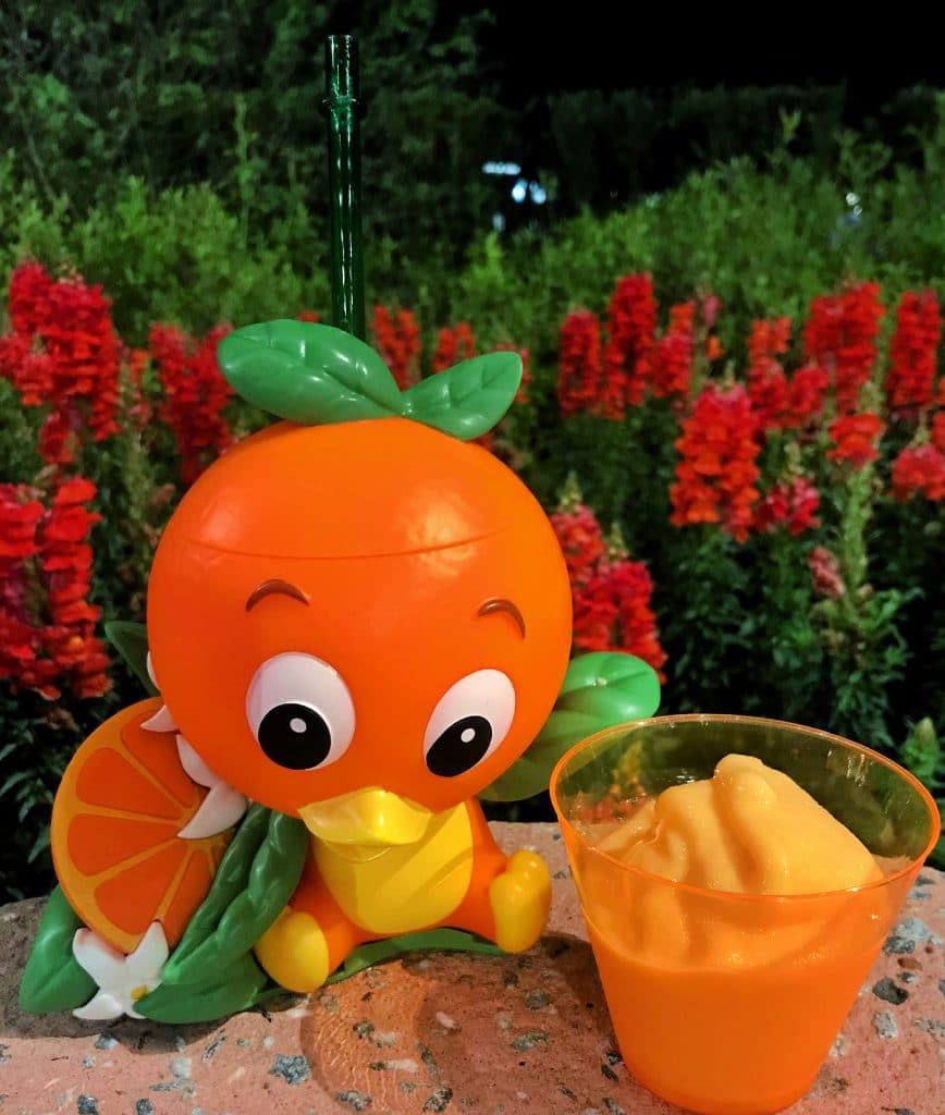 Orange Bird Sipper 2021