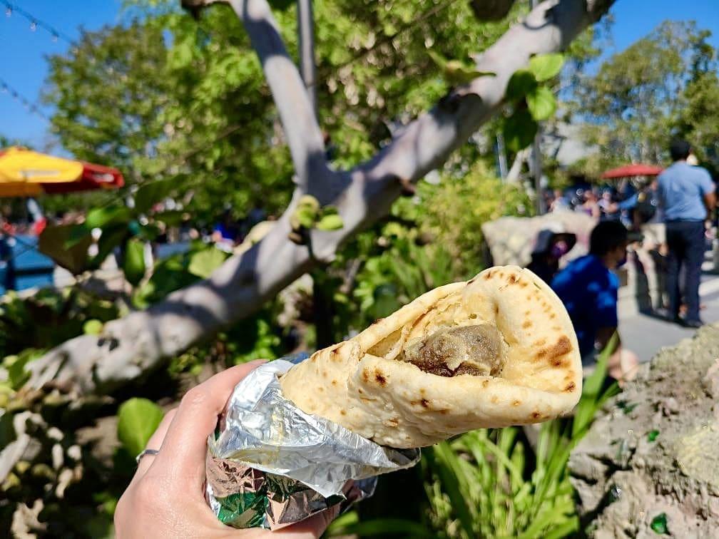 vegan Victory falafel Shawarma Palace