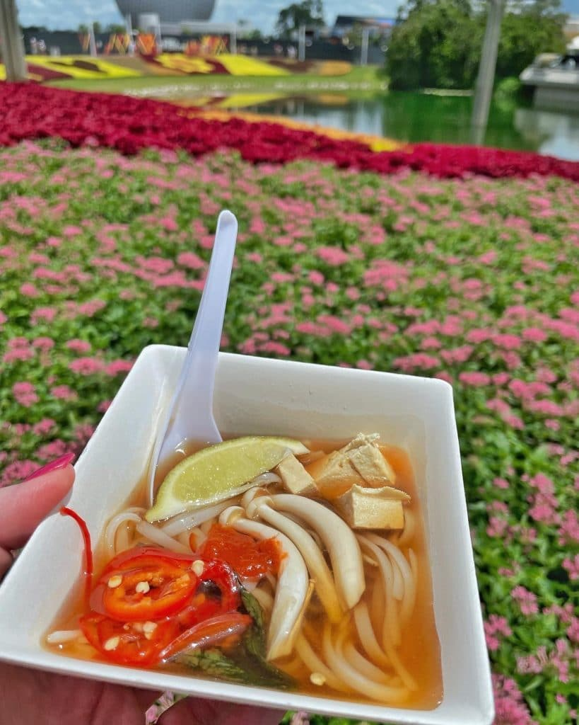 Vegan Tofu Pho at the 2021 Epcot Food and Wine Festival
